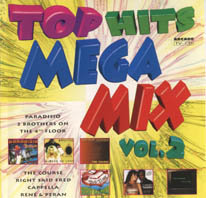 Top Hits Megamix Vol.2